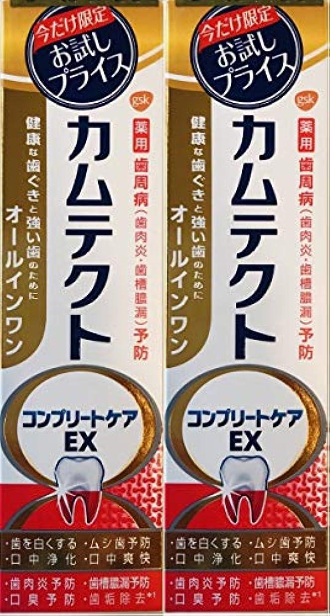 中断飼料解釈する【まとめ買い2個】カムテクトコンプリートケアEX