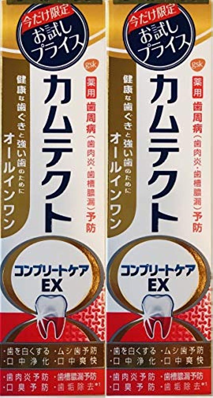 ダイアクリティカル引くおめでとう【まとめ買い2個】カムテクトコンプリートケアEX
