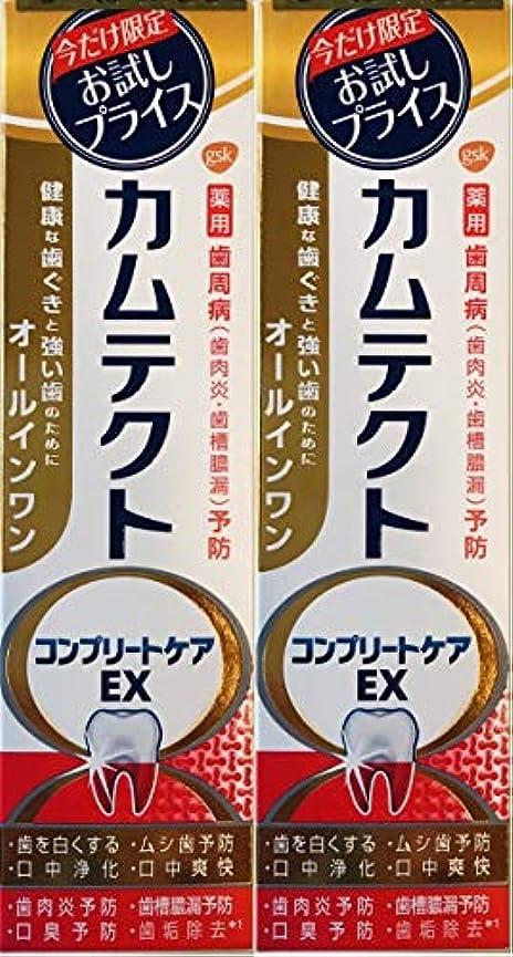 コンピューター落胆する愛撫【まとめ買い2個】カムテクトコンプリートケアEX