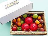 カラフルミニトマト&フルーツトマト(北海道産トマトの宝石箱)ミニとまと900g(糖度8度以上ふるーつトマト)フルーツとまと3個