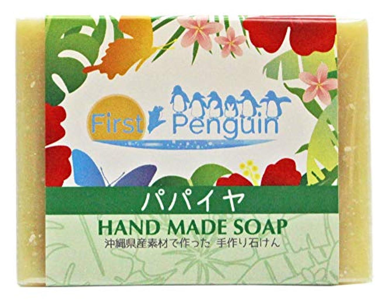 嬉しいですガイド代表する手作り洗顔石けん パパイヤ 100g