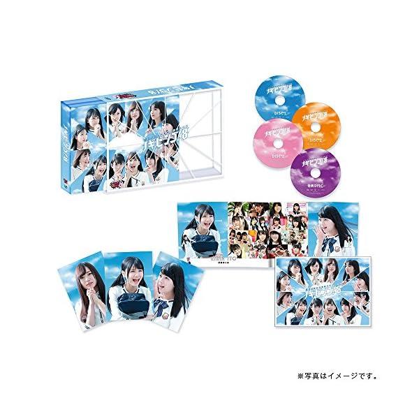 NOGIBINGO!8 DVD-BOXの紹介画像2
