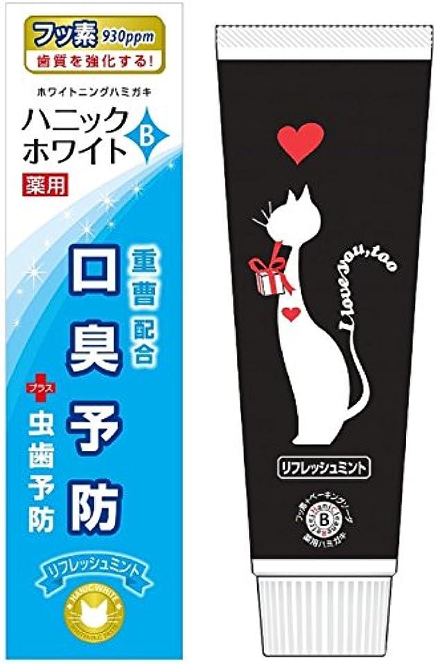 記者戦士ペパーミント薬用ハミガキ ハニックホワイトB [医薬部外品]