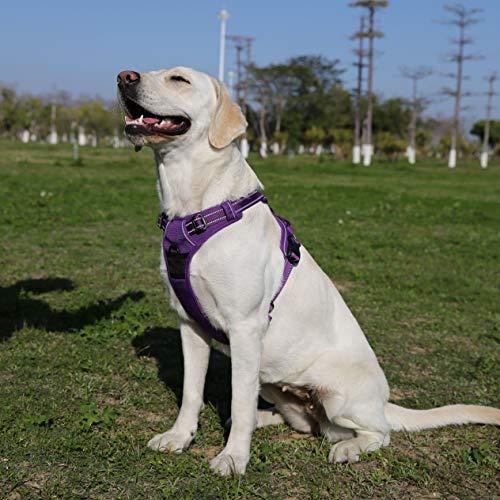 cocomall『犬用訓練ハーネス』