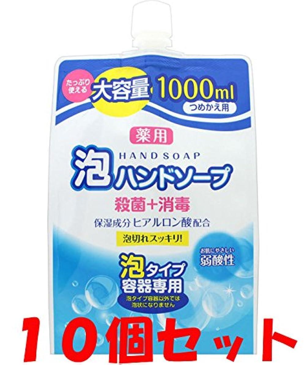 傷つきやすい誠実さリマーク【10個セット】薬用 泡ハンドソープ 詰替 1000ml