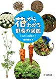 花からわかる野菜の図鑑—たねから収穫まで
