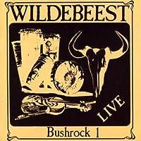 Bushrock 1