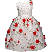 Weixinbuy Girls' Rose Flower Mesh Sleeveless Tulle Birthday Wedding Party Dress