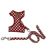 選べる 8種 3サイズ ハーネス リード セット 小型犬 猫用 【DauStage】 トートバッグ付き (L(胸囲36~46cm), ドット柄レッド)