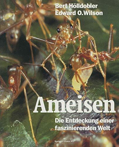 Download Ameisen: Die Entdeckung einer faszinierenden Welt 303486373X