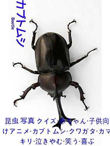 昆虫 写真 クイズ・赤ちゃん・子供向けアニメ・カブトムシ・クワガタ・カマキリ・泣きやむ・笑う・喜ぶ