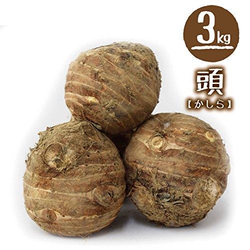 福井県産 中村農園 上庄里芋 頭(かしら) 3kg 土付き (お一人様1箱迄)