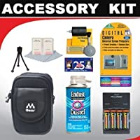 Deluxe Advanced Accessory Kit for Panasonic Lumix DMC-LZ3 LZ5 LZ6 LZ7 LZ8 LZ10 LS70 LS75 LS80 Digital Cameras by Deluxe [並行輸入品]