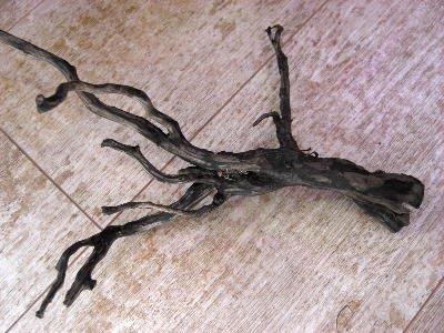 プレミアム流木 ブラックブランチ