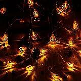 lederTEK 電池式 南瓜 カボチャ 電飾 イルミネーション LED 2.6m 20球 化け物屋敷 ハロウィン 飾り
