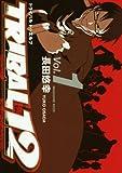 TRIBAL12 / 長田 悠幸 のシリーズ情報を見る