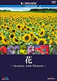 花?Scenery with Floews? V-music03  [DVD]