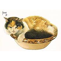 ART UNLIMITED ポストカード (old cat) C8906
