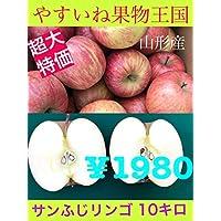 山形産 [ サンふじリンゴ ] 約10kg(30~50玉入)訳あり家庭用