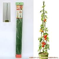 ニチカン トマト支柱セット(高さ1.8m)