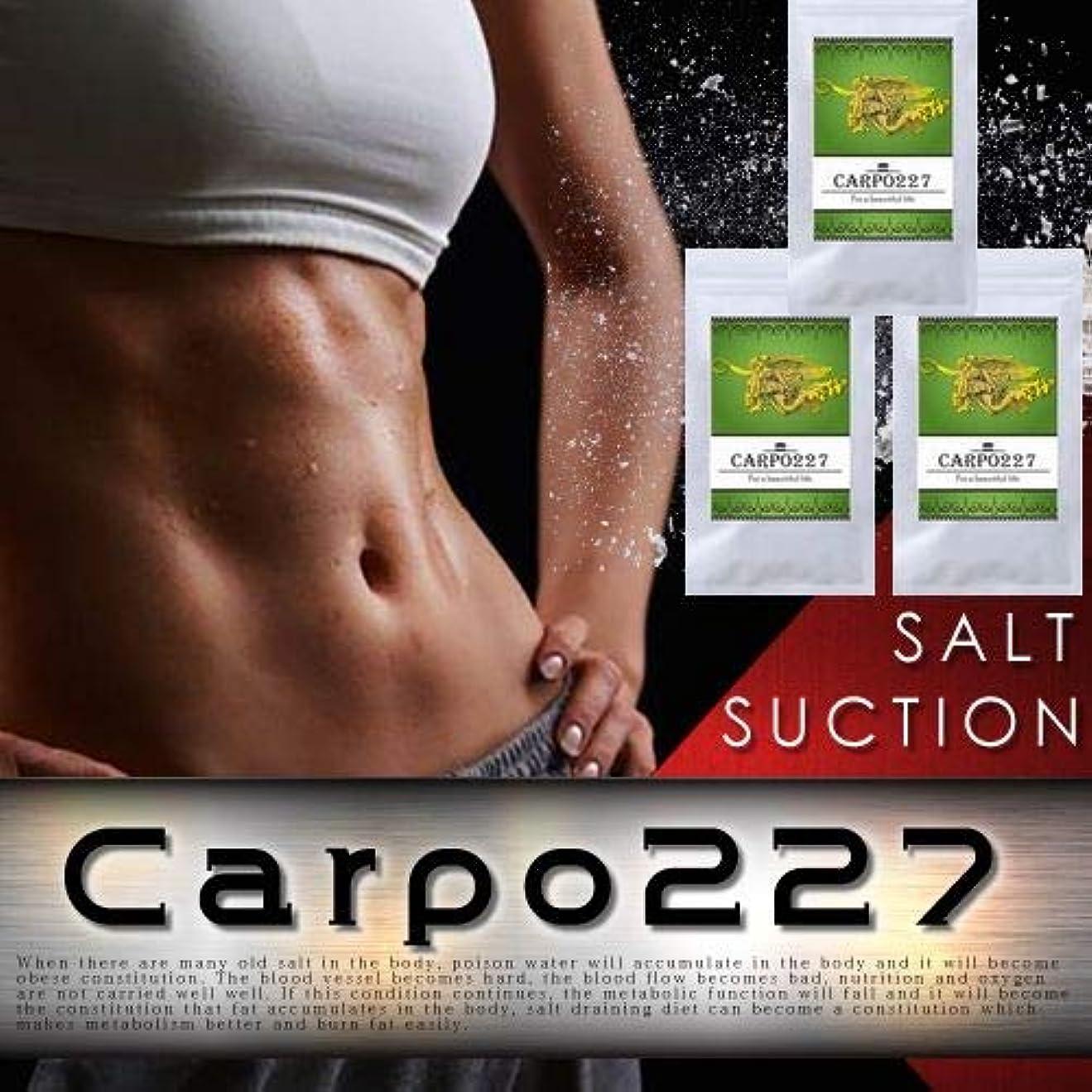 後世努力する財政【3個セット】Carpo227(カルポ227)