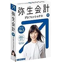 弥生会計 19 プロフェッショナル【最新】  新元号・消費税法改正対応  パッケージ版