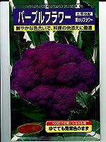 パープルフラワー 武蔵野種苗園の紫カリフラワー種です