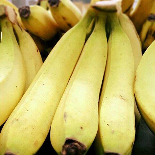 バナナ 1kg