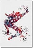 アメイジングスパイダーマン2の映画アートシルクのポスターは、部屋のインテリアを13x20inches [並行輸入品]