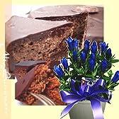 敬老の日♪リンドウの鉢植え&本場ウィーンレシピのザッハトルテセット