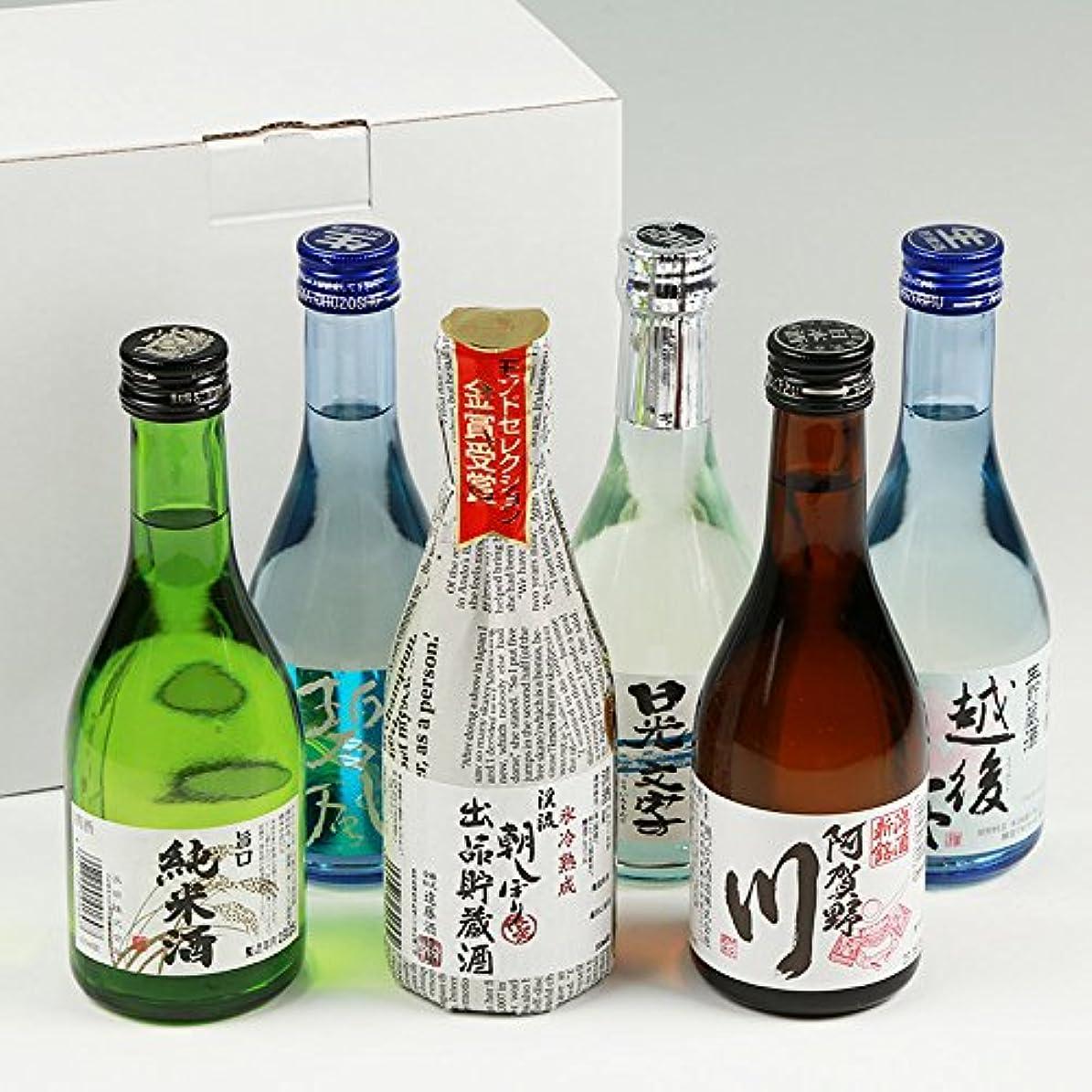 転倒追加するビジターお酒 日本酒 飲み比べ セット 金賞受賞酒 飲みきりサイズ 300ml×6本