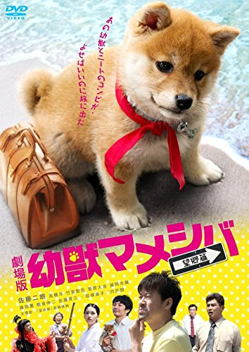 映画版「 幼獣マメシバ 望郷篇 」 [DVD]
