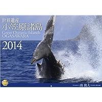 世界遺産 小笠原諸島 2014 (写真工房カレンダー / FL-07)