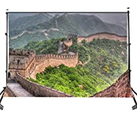 Lyly郡( 10× 7ft Great Wall of China観光写真バックドロップfor Studio背景107–247