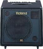 Rolandその他 KCシリーズ キーボードアンプ KC-550の画像