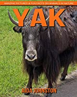Yak: Amazing Pictures & Fun Facts on Animals in Nature