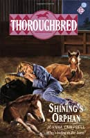 Thoroughbred #12 Shining's Orphan
