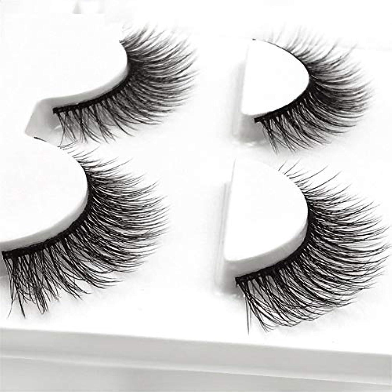 複製する敏感なフォアマンGuomao ミンク髪つけまつげナチュラルアイテールロングまつげ (色 : 3D-X15)