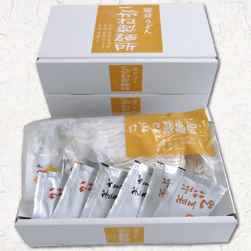讃岐うどん こがね製麺所 オリジナル商品の詰め合わせ 6人前お土産うどんセット つゆ付