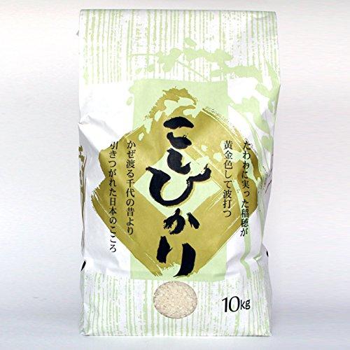 新潟米コシヒカリ 10kg 新潟産こしひかり 精米・白米 産地直送 贈答用 自宅用 新米
