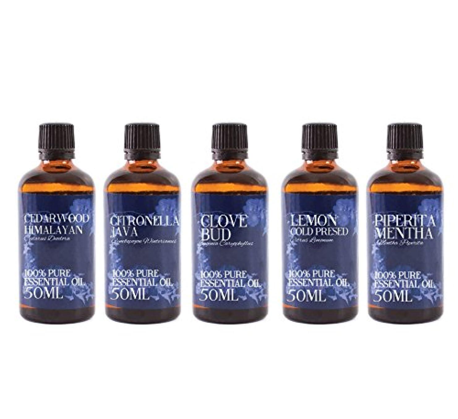 宗教的なパラナ川イルMystic Moments   Gift Starter Pack of 5 x 50ml Insect Repellent Essential Oils