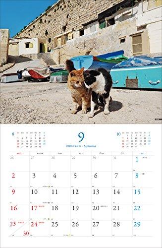 2018 岩合光昭 世界の猫カレンダー(壁掛け) ([カレンダー])