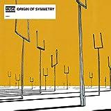 Origin of Symmetry [12 inch Analog]