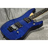 Washburn ワッシュバーン / N4E FM Trans Blue