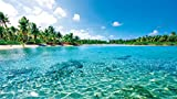 FEEL THE NATURE -TAHITI BLUE-フィール・ザ・ネイチャー タヒチブルー【Blu-ray Disc】 画像