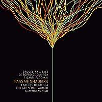 PASSARINHADEIRA - AO VIVO