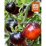 【PLANT】Blue Tomato INDIGO 'ROSE' ブルートマト・インディゴ・ローズ(9cmポット・自根苗2苗)*世界初の高アントシアニン・ブルートマト、『INDIGO インディゴ・シリーズ』 *種苗登録品種です。