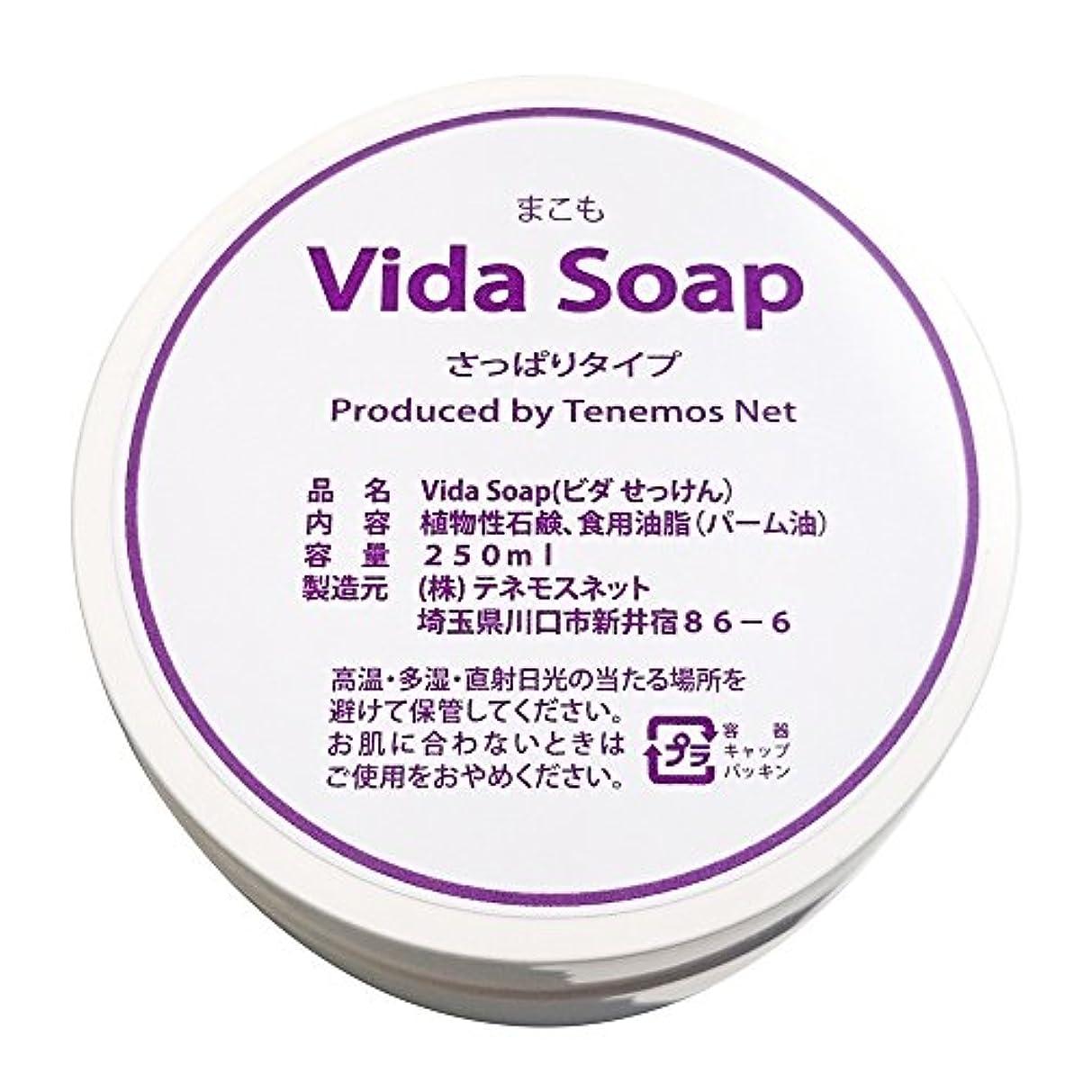 惨めなフェードアウトポイントテネモス ビダせっけん Vida Soap さっぱりまこも 植物性 250ml