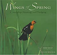 Wings of Spring: Courtship, Nesting, and Fledging