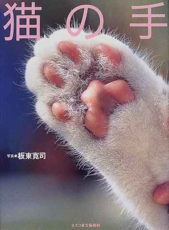 猫の手の詳細を見る
